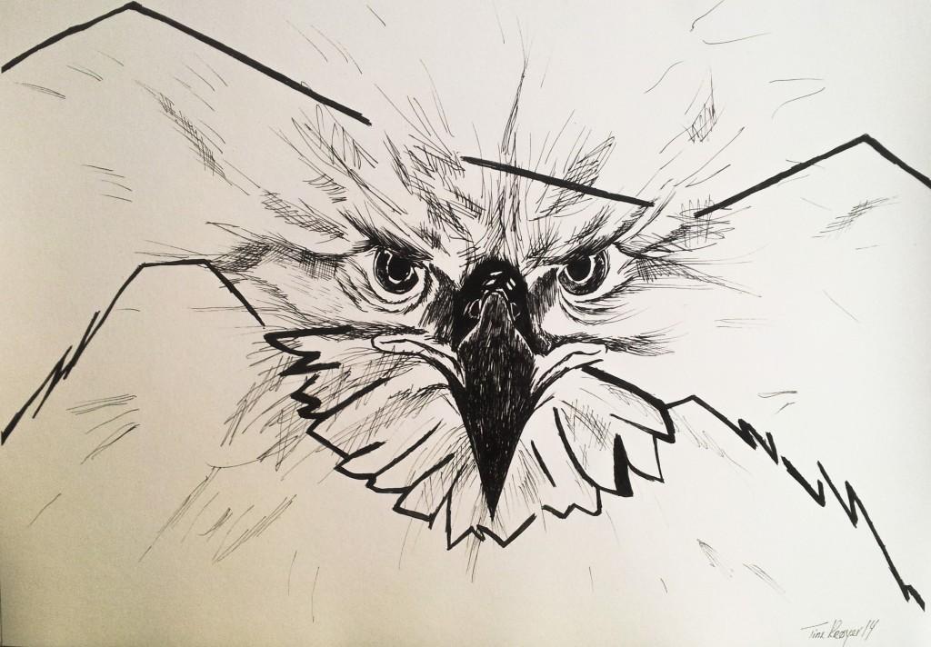 5) Ørneflugt
